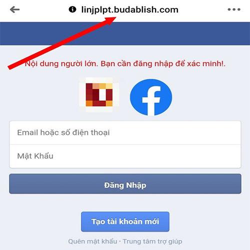 Website-gia-mao-Facebook